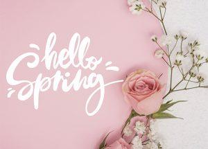 """Graphisme fond rose avec écrit """"Hello spring"""" et une rose posée"""